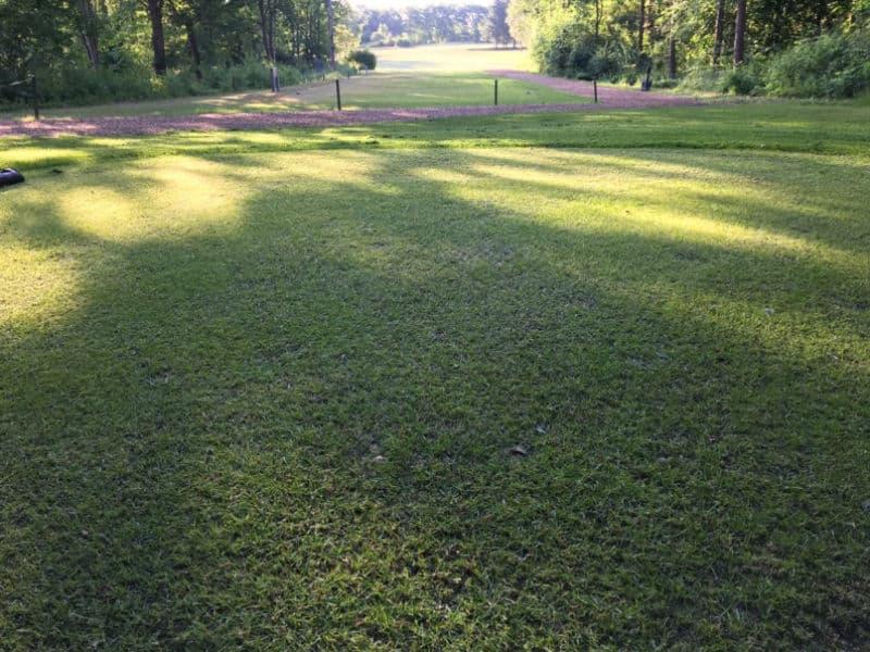 golfbane-med-hybridgraes