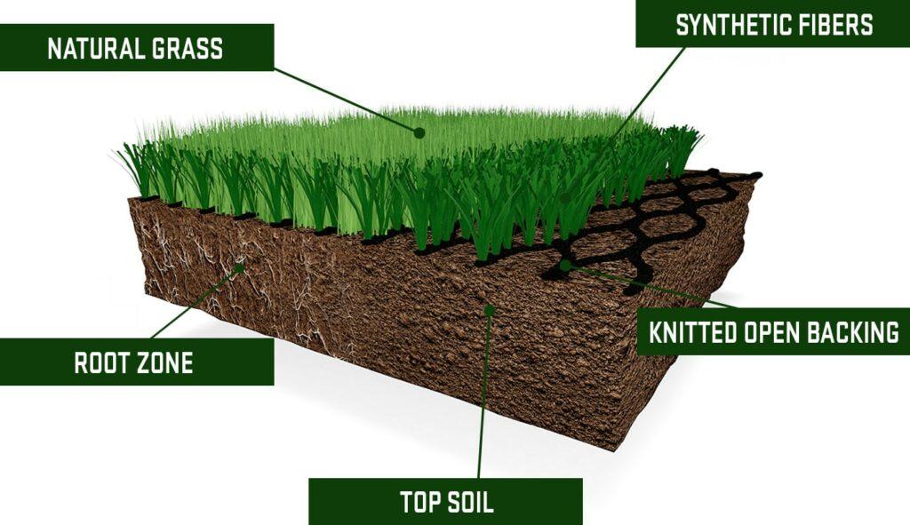 Hybrid Grass Construction