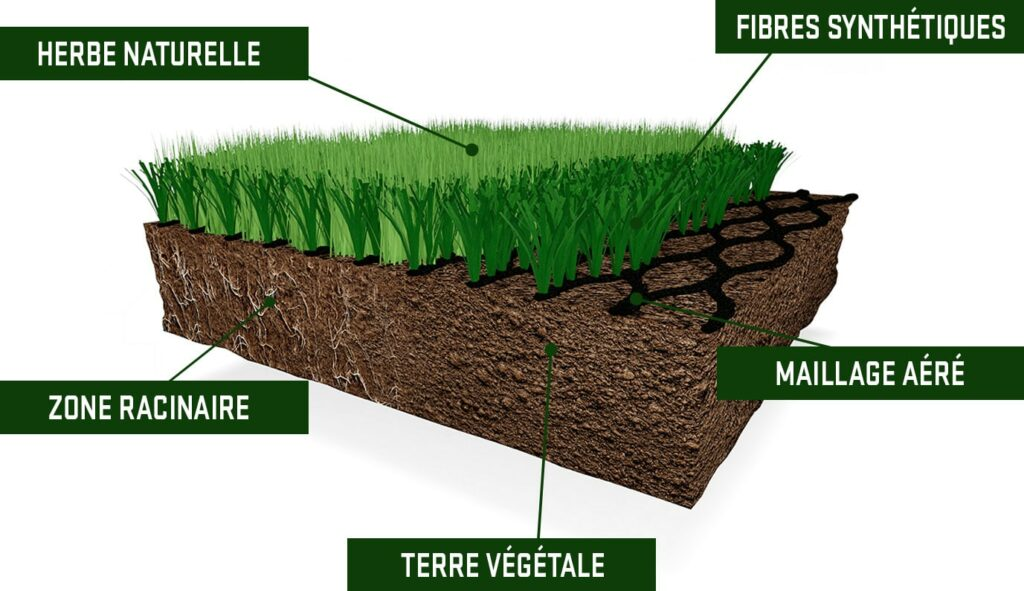 la pelouse hybride