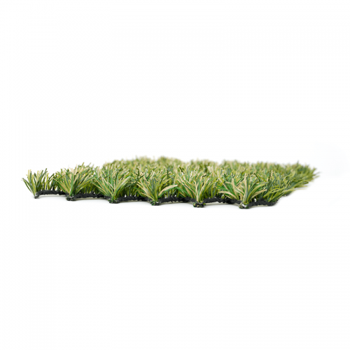 Green Hybrid 43